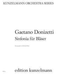 Donizetti, Gaetano: Sinfonia für Flöte, 2 Oboen, 2 Klarinetten, 2 Fagotte und 2 Hörner, Stimmen