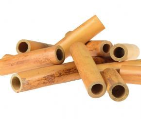 Clarinet tube cane: Marca